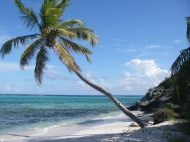 Plages Grenadines