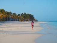 Plage de Barbuda