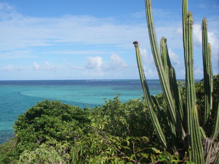 Location de voilier avec skipper Guadeloupe