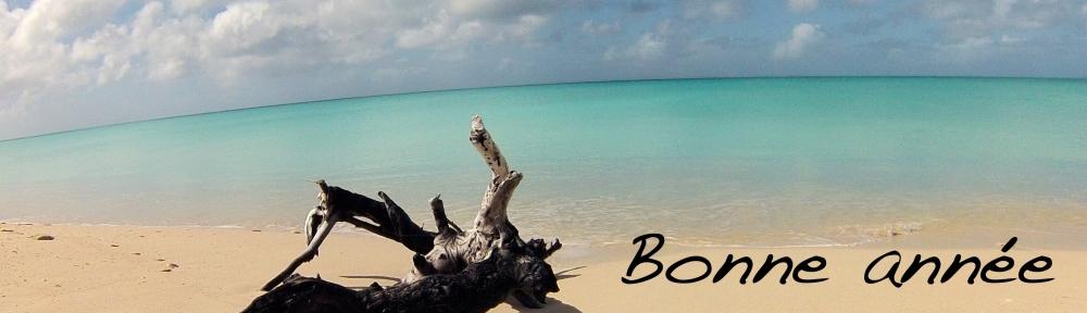 Croisière Barbuda