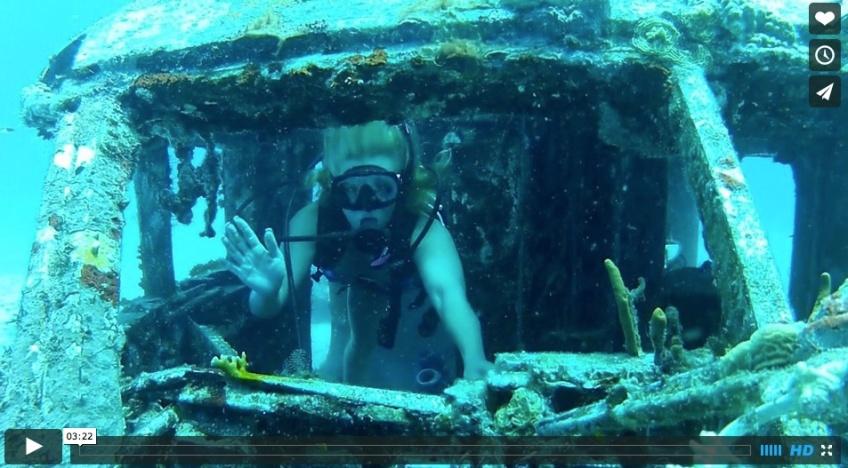 Plongee sur coral gardens BVI