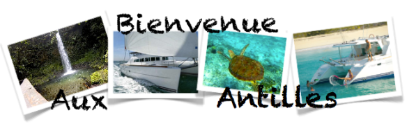 Location de catamaran Grenadines Guadeloupe